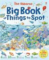 Picture of Big Book of Things to Spot (CV)