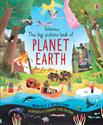 Picture of Big Picture Book of Planet Earth, The (IR)